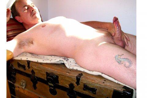 naked JerBear lying on a trunk